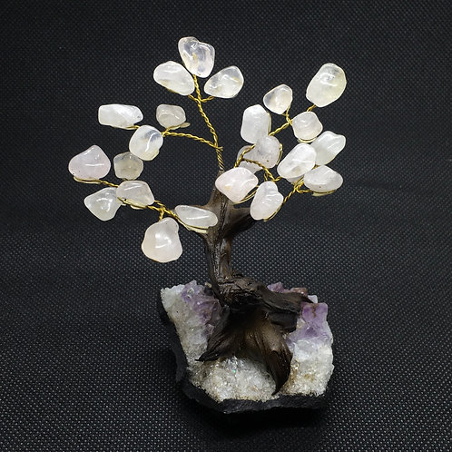 Bonsai Gem Crystal Trees -Small
