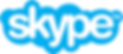 Skype logo .png