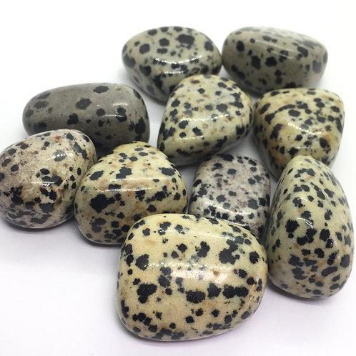 Jasper Dalmatian Tumblestones