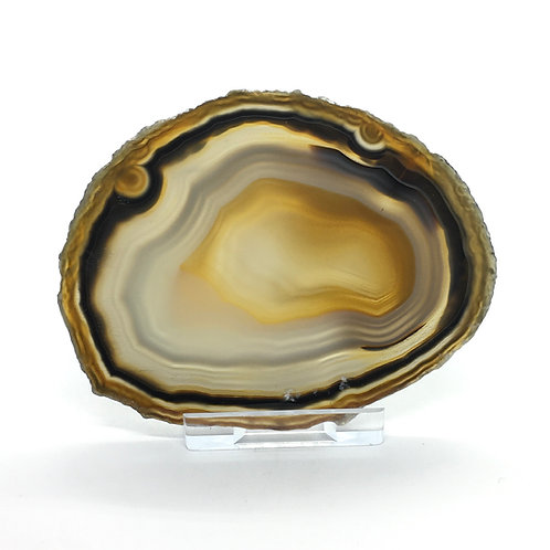 Natural Agate Slice - Size 2 - A - Polished with Free Stand