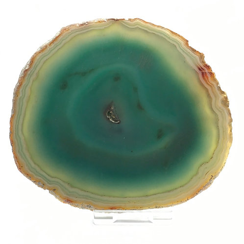 Green Agate Slice -Size 4 - A - Polished with Free Stand