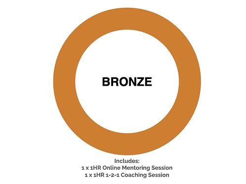 Bronze Journey