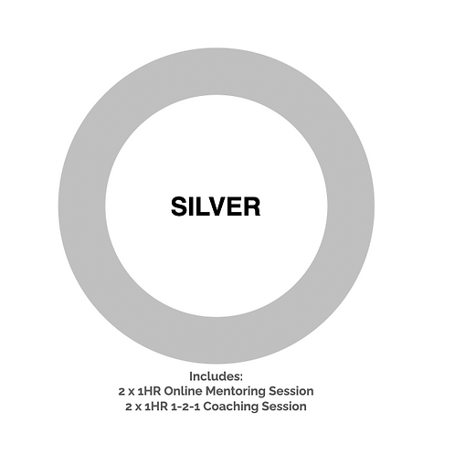 Silver Journey