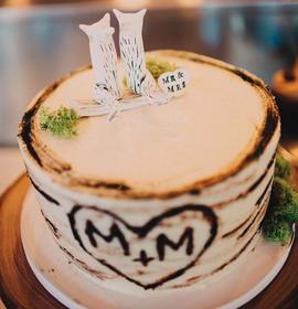 Matt & Michelle's Cake/Topper
