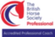 Hi_Res_BHS_Education_Logo_Professional_C