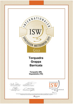 Medaglia d'Oro ISW 2015