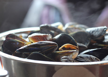 mussels-811759_1920.jpg