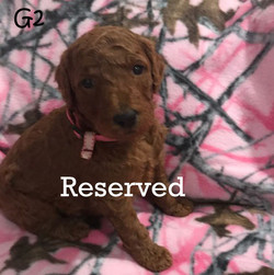 G2 reserved