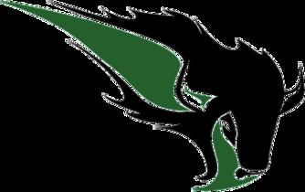 OKBU_Bison_logo.png