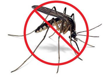Free Mosquito/Yellow Jacket Abatement