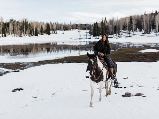 THE LANGUAGE OF HORSES