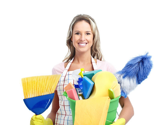 Quality Home Services - Central Otago, Queenstown Residential and Commercial Cleaning Services Start your own buisness