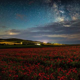 Poppy's under the Milky Way.jpg