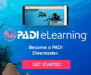 eLearning_DM_divers_bnrs300x250.jpg