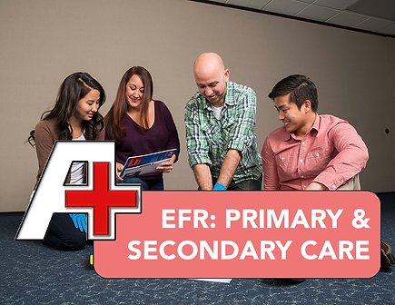 EFR Primary & Secondary.png
