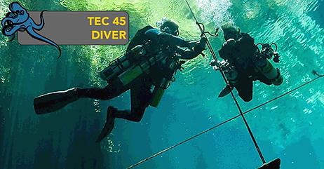 Tec 45 Diver.png