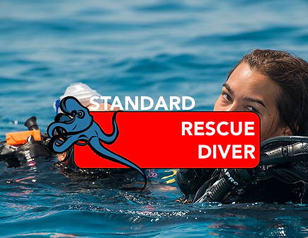RESCUE STANDARD.png