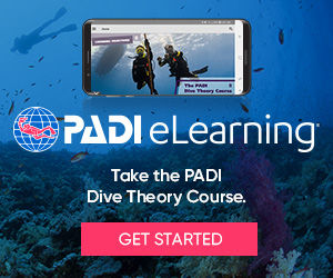 eLearning_DiveTheory_divers_bnrs300x250.