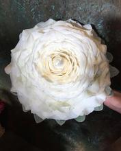 Syet rose