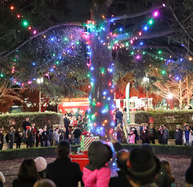 Christmas Tree Lighting 2018