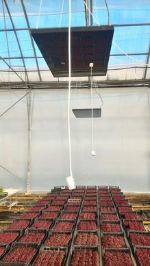 mimi-tarım-ardo-ısıtıcı2.jpg