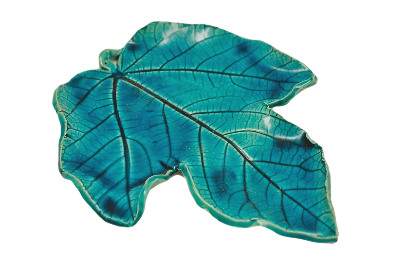 Ocean Blue Incense Fig Tree Leaf