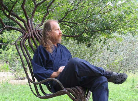 Grow our own chairs for national tree week