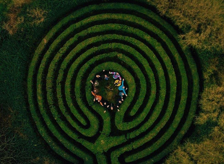 Snowdrops, Labyrinths and their effects on Alzheimer's