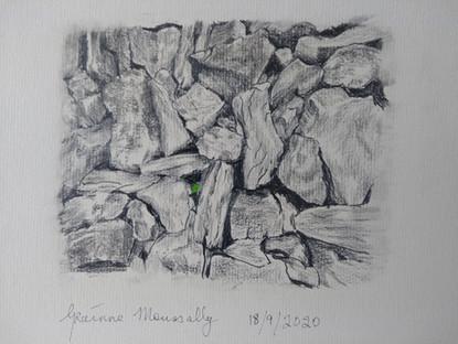 Grainne Moussally