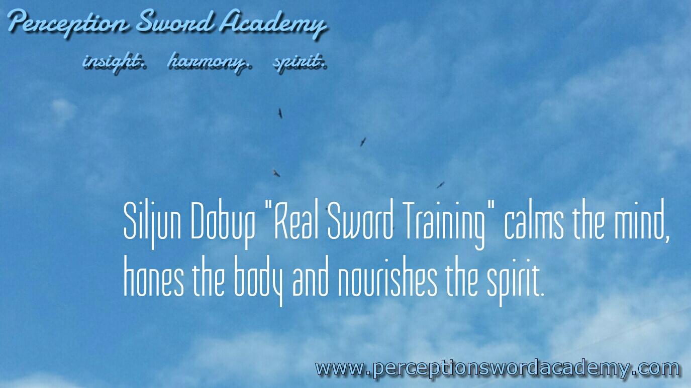 Perception Sword Academy Inspiration 2