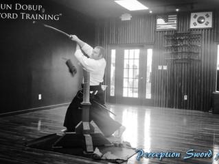 5. Evan's Dan Essay: Review of Self: How sword training has changed my life.