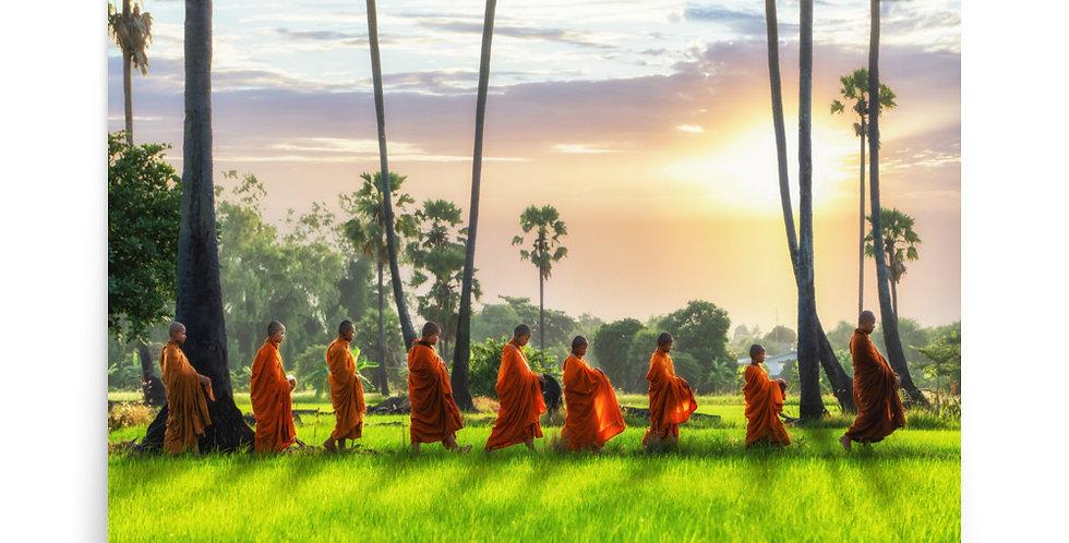 Poster: Monk is walking across rice field in Thailand