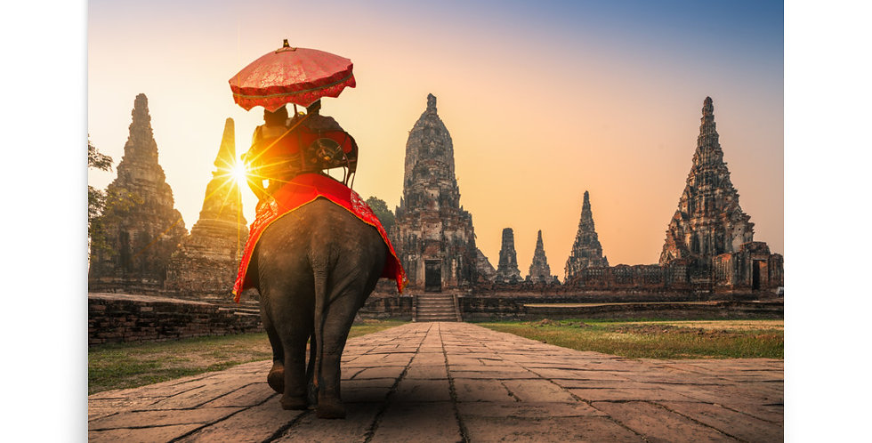 Poster: Elephant in Ayutthaya Historical Park