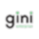 gini-enterprice.png
