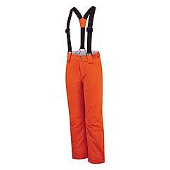D bls 79 dkw419 orange.jpg