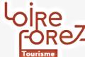 loire tourisme logo wix.png