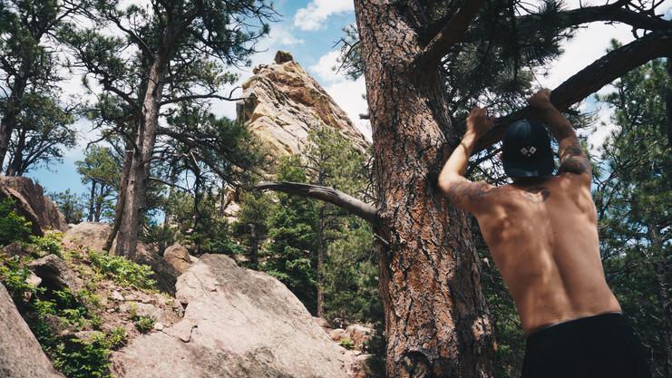 Boulder_jay-1.jpg