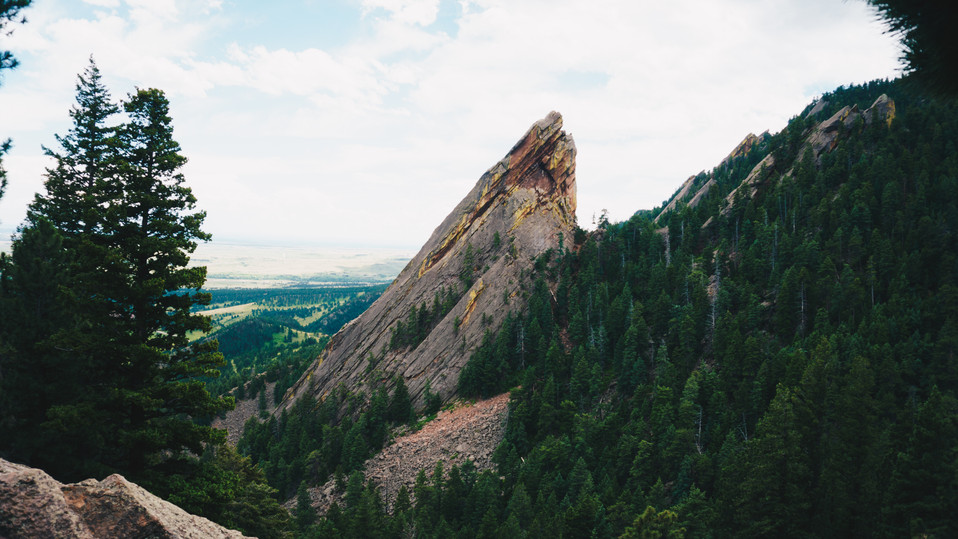 Boulder_jay-1-7.jpg