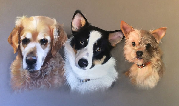 Family of dogs pet portrait in pastel