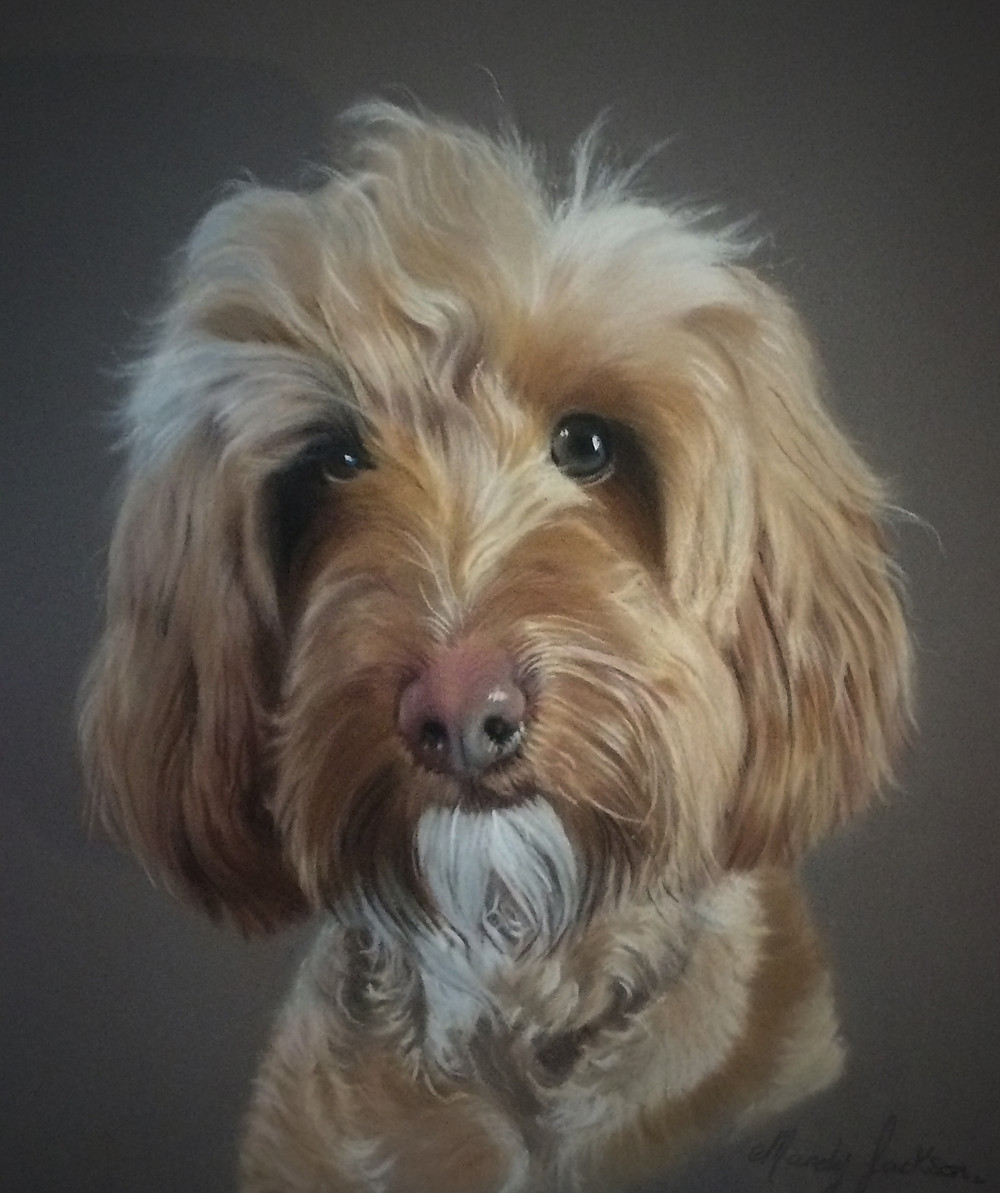 Pet portrait in pastels on Pastelmat