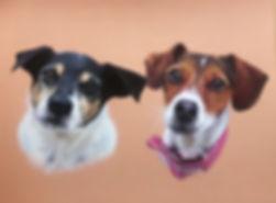 Duo Pet Portrait