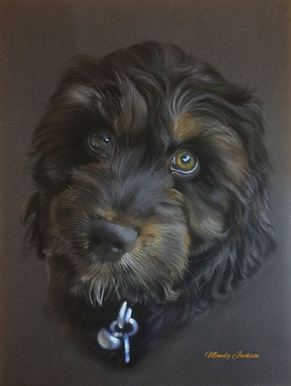 Puppy pet portrait in pastel