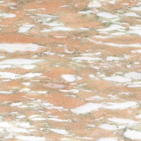 rosa-norvegia-475x475
