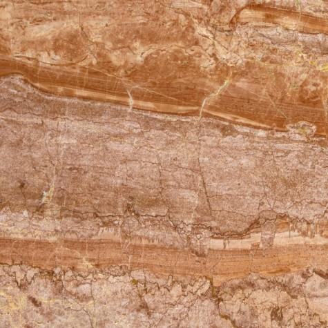 arancio-di-selva1-475x475