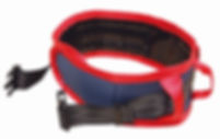 walking aid & lifting belt 3 (Klein).jpg