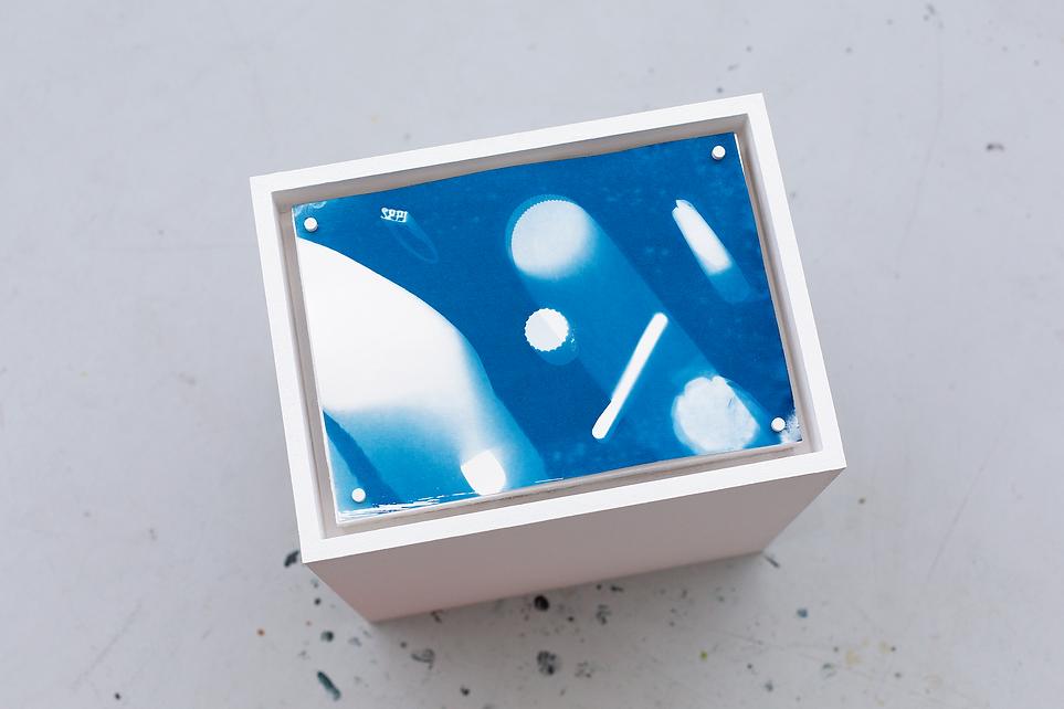 Maxi Pfeil Cyanotype