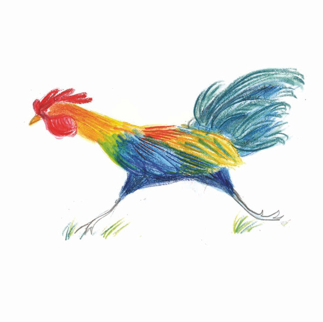 ChickenRunning.jpg