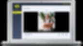 ClientPortal_Video comments.png