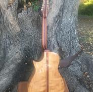 Guitar Back