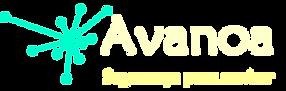 Logo Avnoa3.png